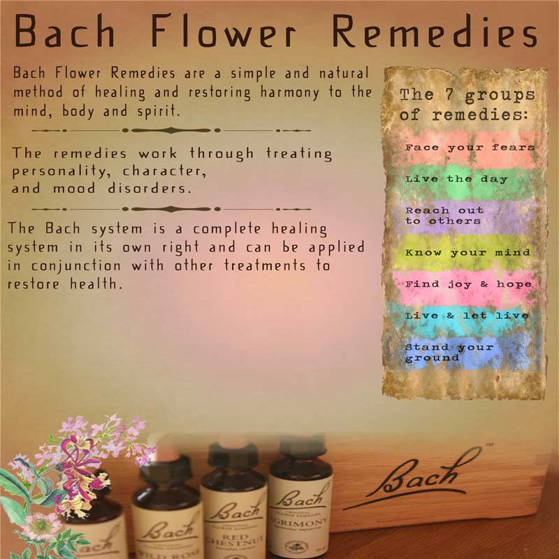 A Poster outlinging the services offered by Mary Queeney of Healing Earth in Galway regarding Bach Flower Remedies